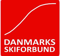DSkiF logo